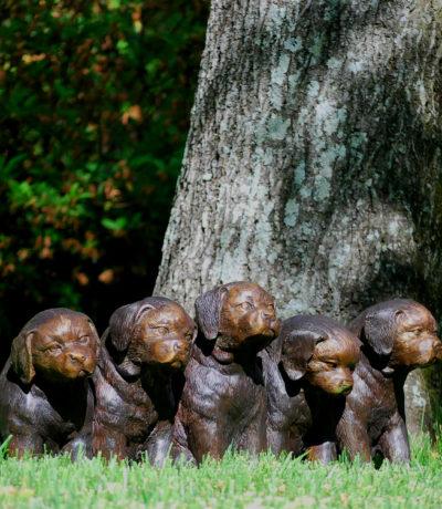 Bronze Five Sitting Puppy Dogs Cast Bronze Sculpture Garden Statue Metropolitan Galleries High Point North Carolina Home Decor Wholesale