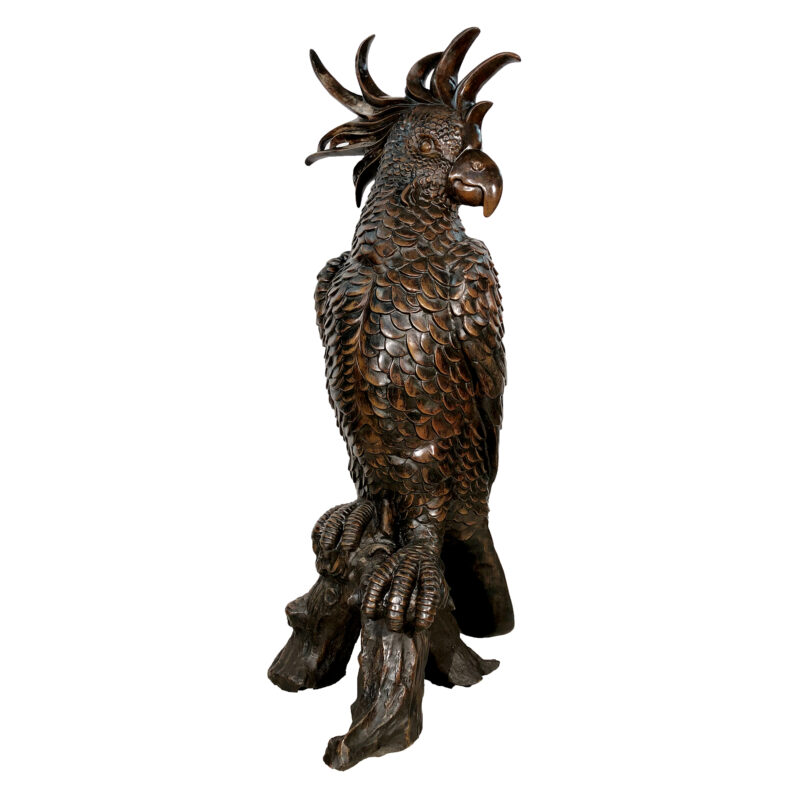 SRB991852 Bronze Large Cockatoo Sculpture by Metropolitan Galleries Inc