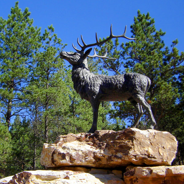Cast Bronze Standing Elk Sculpture