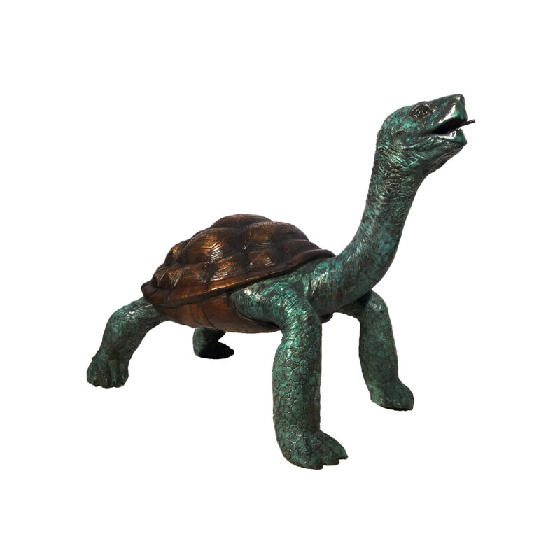 SRB082054 Bronze Galapagos Turtle Fountain Sculpture by Metropolitan Galleries Inc