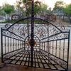 Iron Double Gate Ornate Pattern