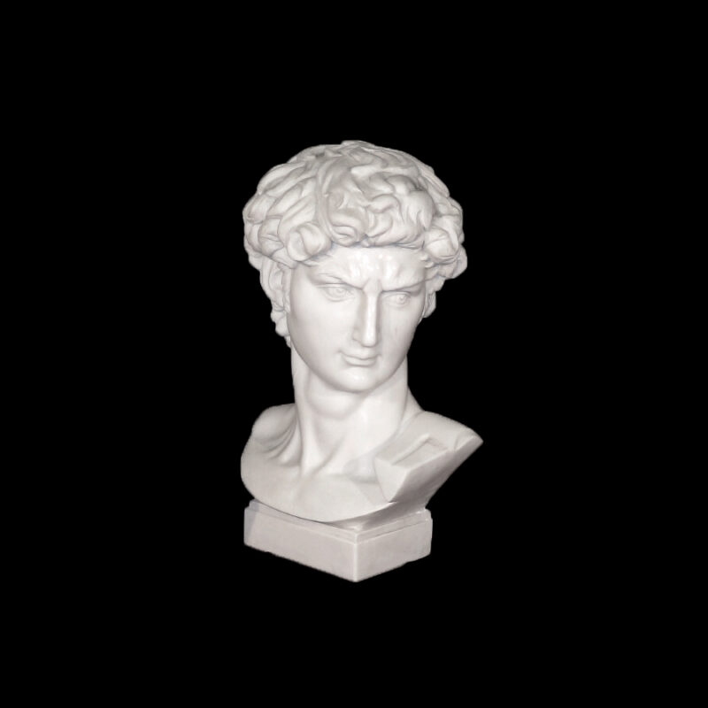 JBS208 Marble Bust of David Sculpture by Metropolitan Galleries Inc