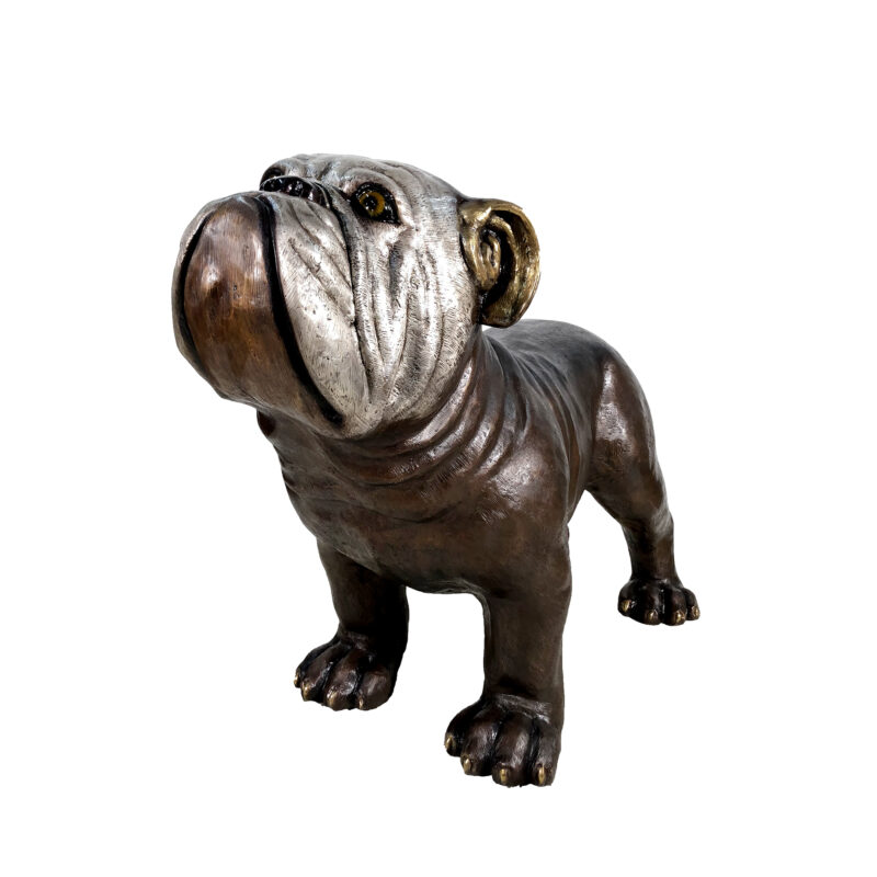 SRB056812 Bronze Large Standing Bulldog Sculpture by Metropolitan Galleries Inc