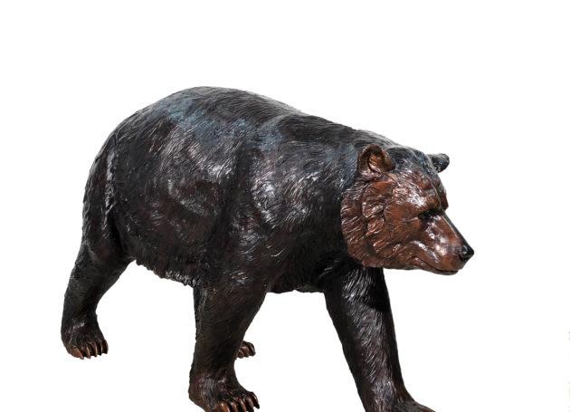 Blazer the Black Bear