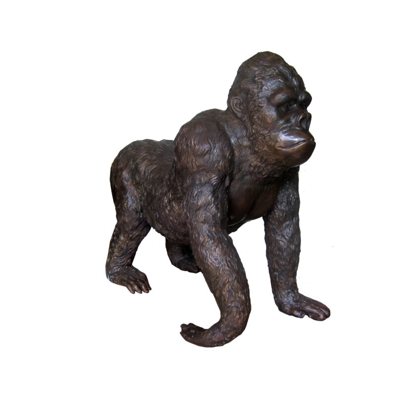 SRB704332 Bronze Young Walking Gorilla Sculpture by Metropolitan Galleries Inc