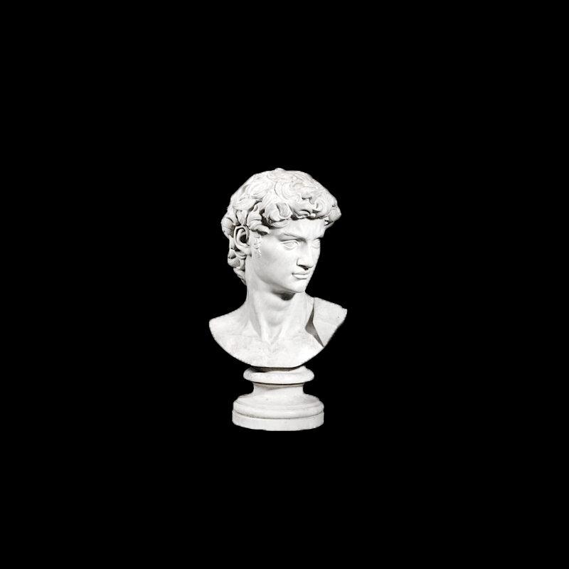 JBS204 Marble Bust of David Sculpture by Metropolitan Galleries Inc